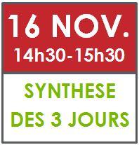 16 nov synthèse